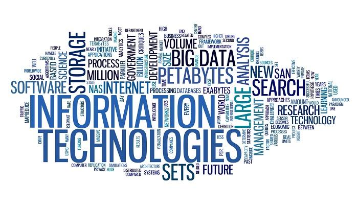 Essays on information technology